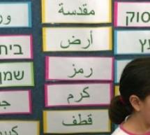 غزّاويّات: هويّتي اللبنانية… أنا الفلسطينية