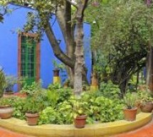 نيويورك تحتفي بالرسامة المكسيكية فريدا كالو بعمل نسخة من حديقتها ومرسمها