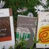 صالح الدريدي: الذّات والمرآة في تجربة هدى الدغّاري الشعريّة